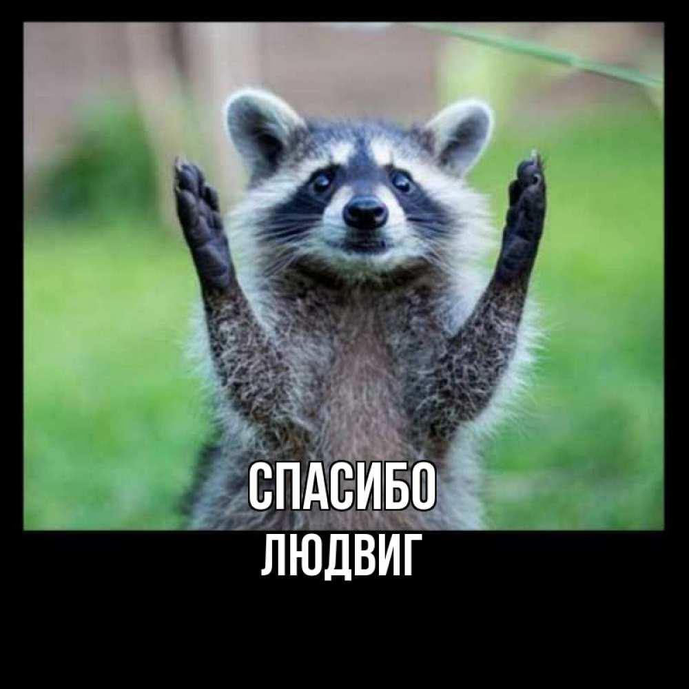 Открытка на каждый день с именем, Людвиг Спасибо милые животные Прикольная открытка с пожеланием онлайн скачать бесплатно