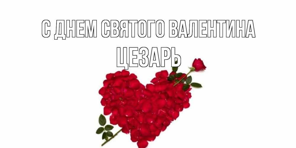 Открытка на каждый день с именем, Цезарь С днем Святого Валентина роза как стрела амура попала в сердце из роз Прикольная открытка с пожеланием онлайн скачать бесплатно