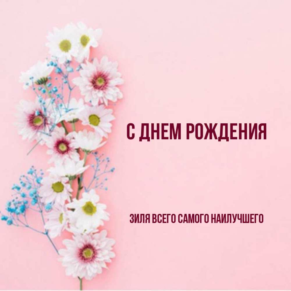 Поздравлениями днем, зиля открытки с днем рождения