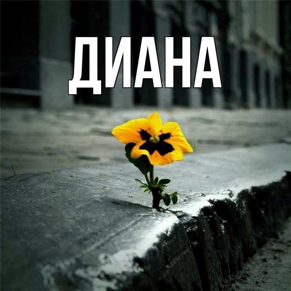 Музыкальная открытка с именем диана, гроза дождь