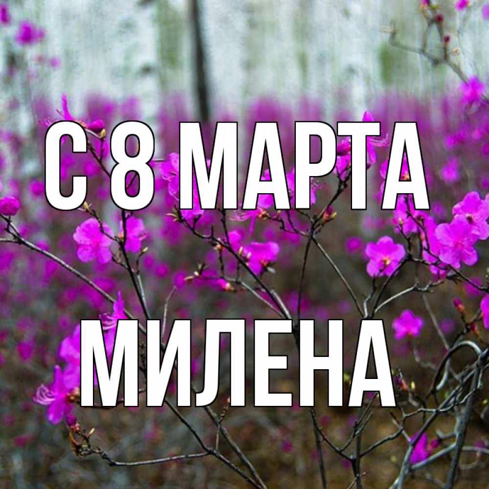 упрощенное стихи с именем милена на 8 марта тех