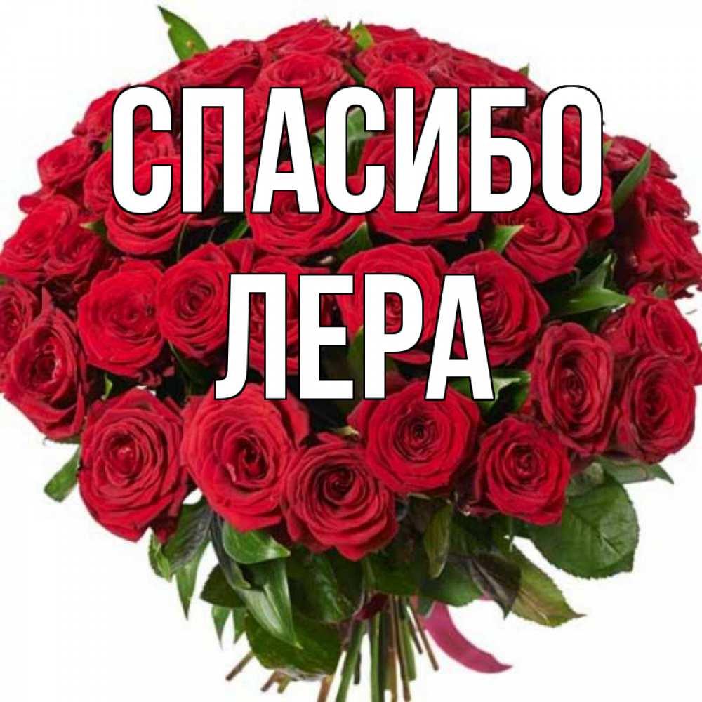 цветы для леры картинки люди