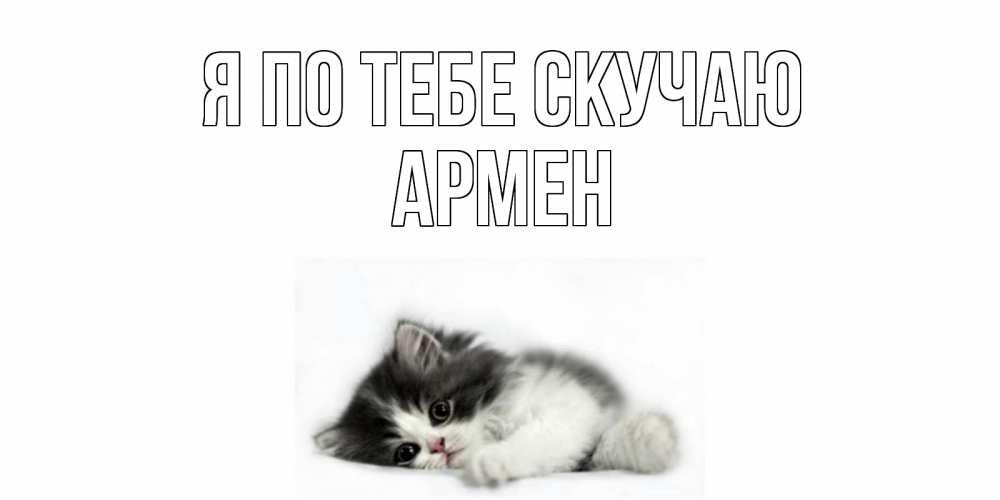 Открытка на каждый день с именем, Армен Я по тебе скучаю кот, скука Прикольная открытка с пожеланием онлайн скачать бесплатно