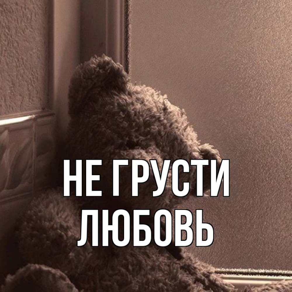 Картинки мишки с надписью не грусти