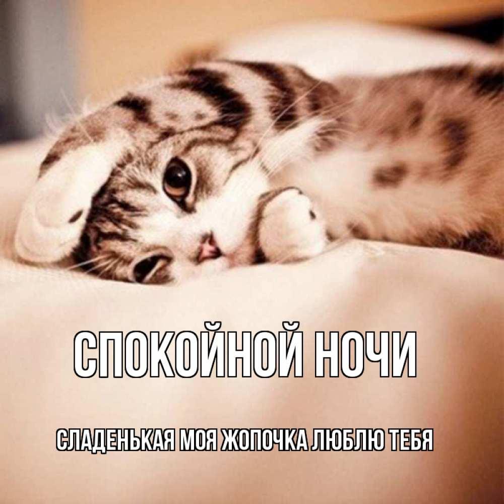 Поздравление, спокойной ночи милая моя картинки
