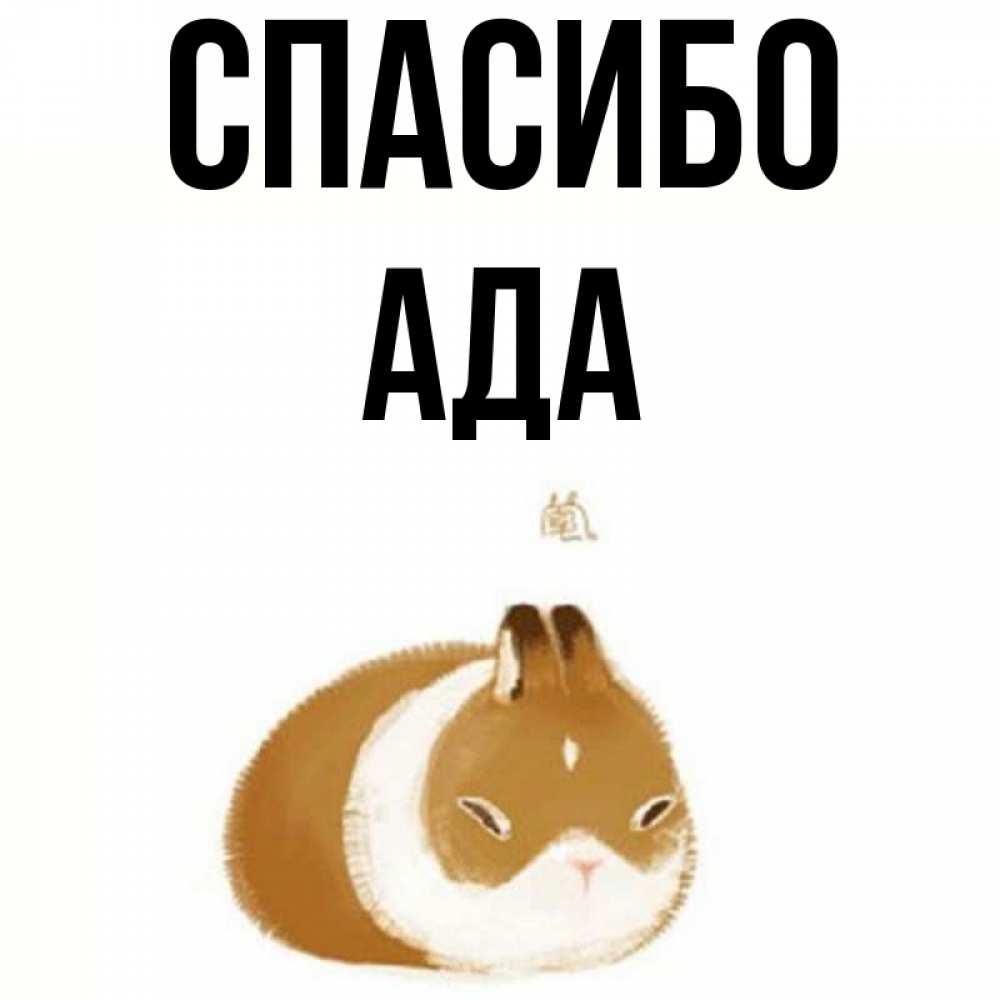 Открытка на каждый день с именем, Ада Спасибо коричнево белый домашний питомец Прикольная открытка с пожеланием онлайн скачать бесплатно