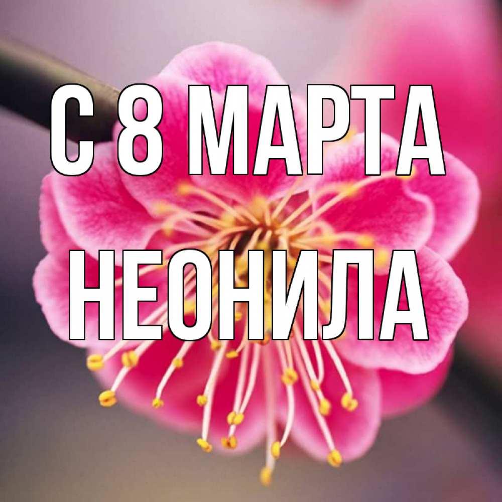Открытка на каждый день с именем, Неонила C 8 МАРТА цветы Прикольная открытка с пожеланием онлайн скачать бесплатно