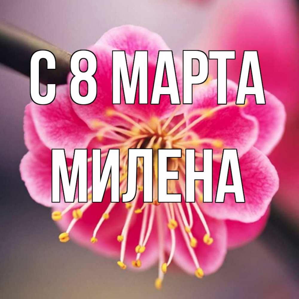 стихи с именем милена на 8 марта засолкой