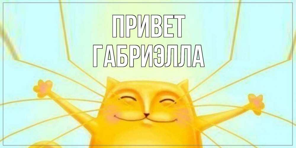 Открытка на каждый день с именем, Габриэлла Привет кот Прикольная открытка с пожеланием онлайн скачать бесплатно