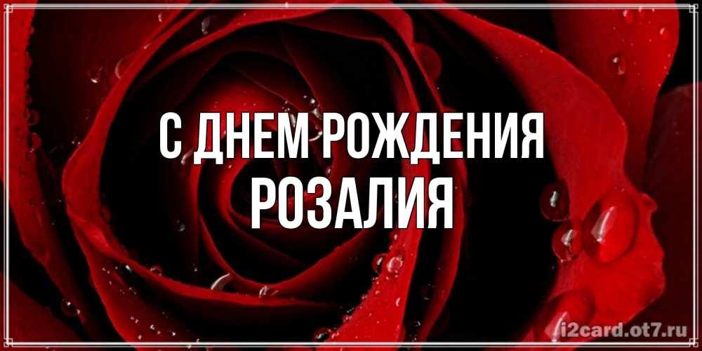 Поздравления для именинников на васильевском макияж