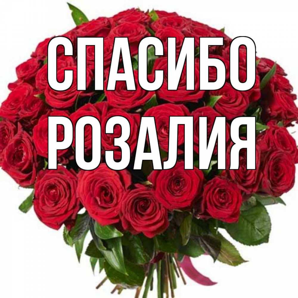 картинки с именами розалия ящик гортензии