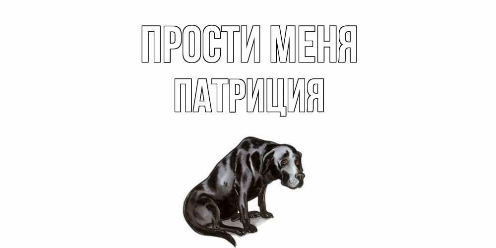 Открытка на каждый день с именем, Патриция Прости меня грустная собака на открытке с подписью прости меня Прикольная открытка с пожеланием онлайн скачать бесплатно