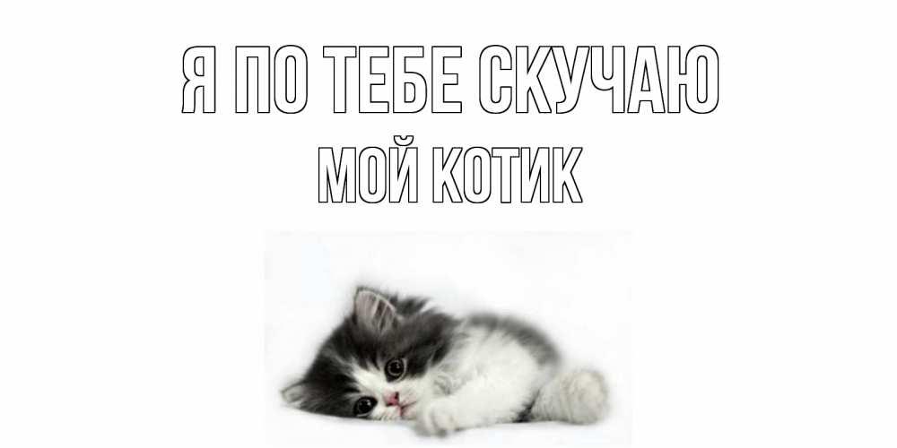 Открытки котенок я по тебя скучаю