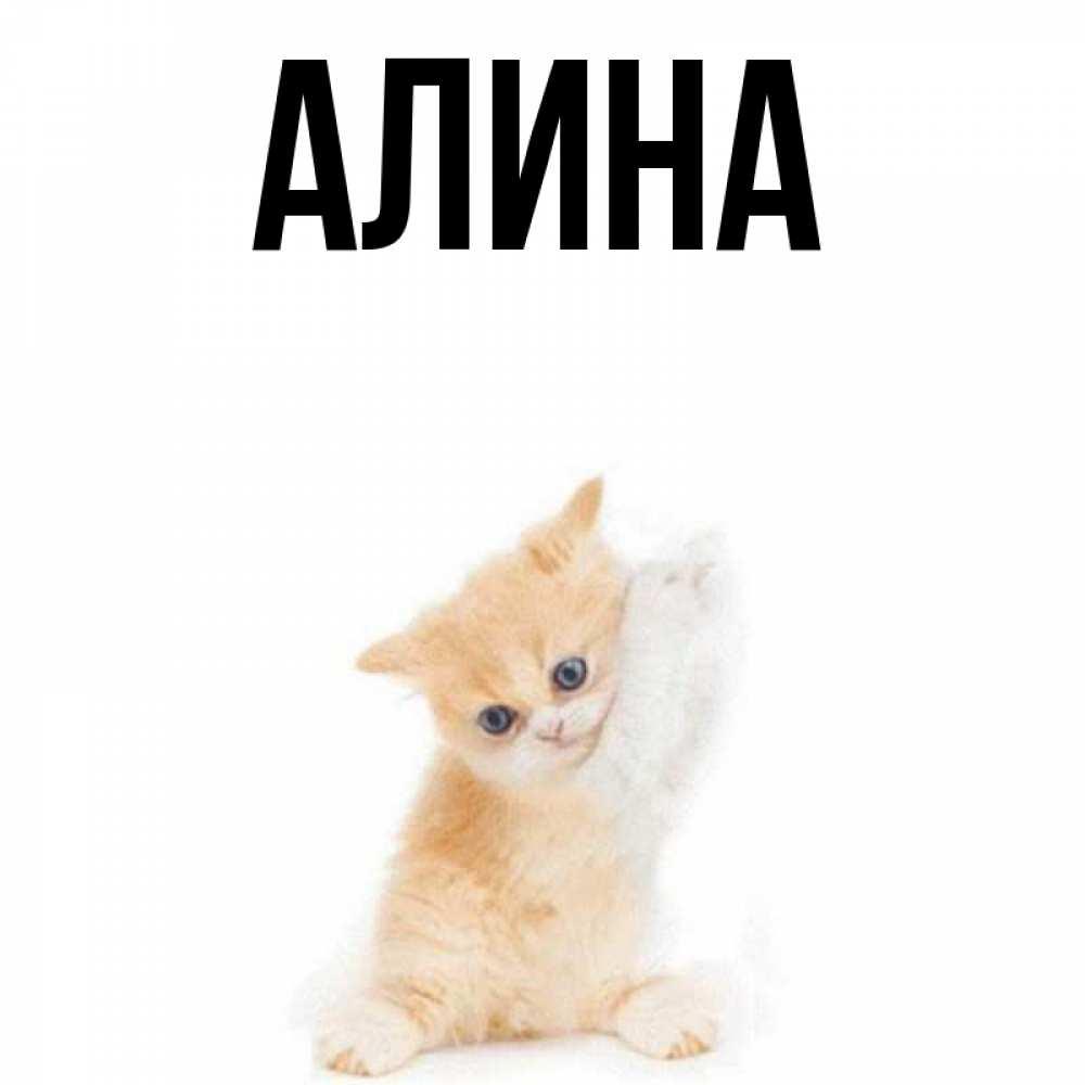 Снова школу, открытки с именем алина