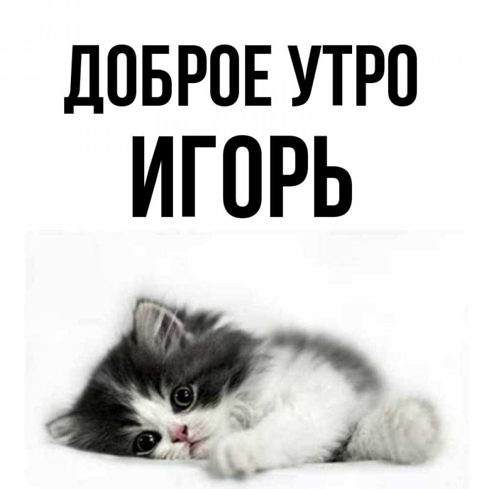 Фото игоря воронцова сначала