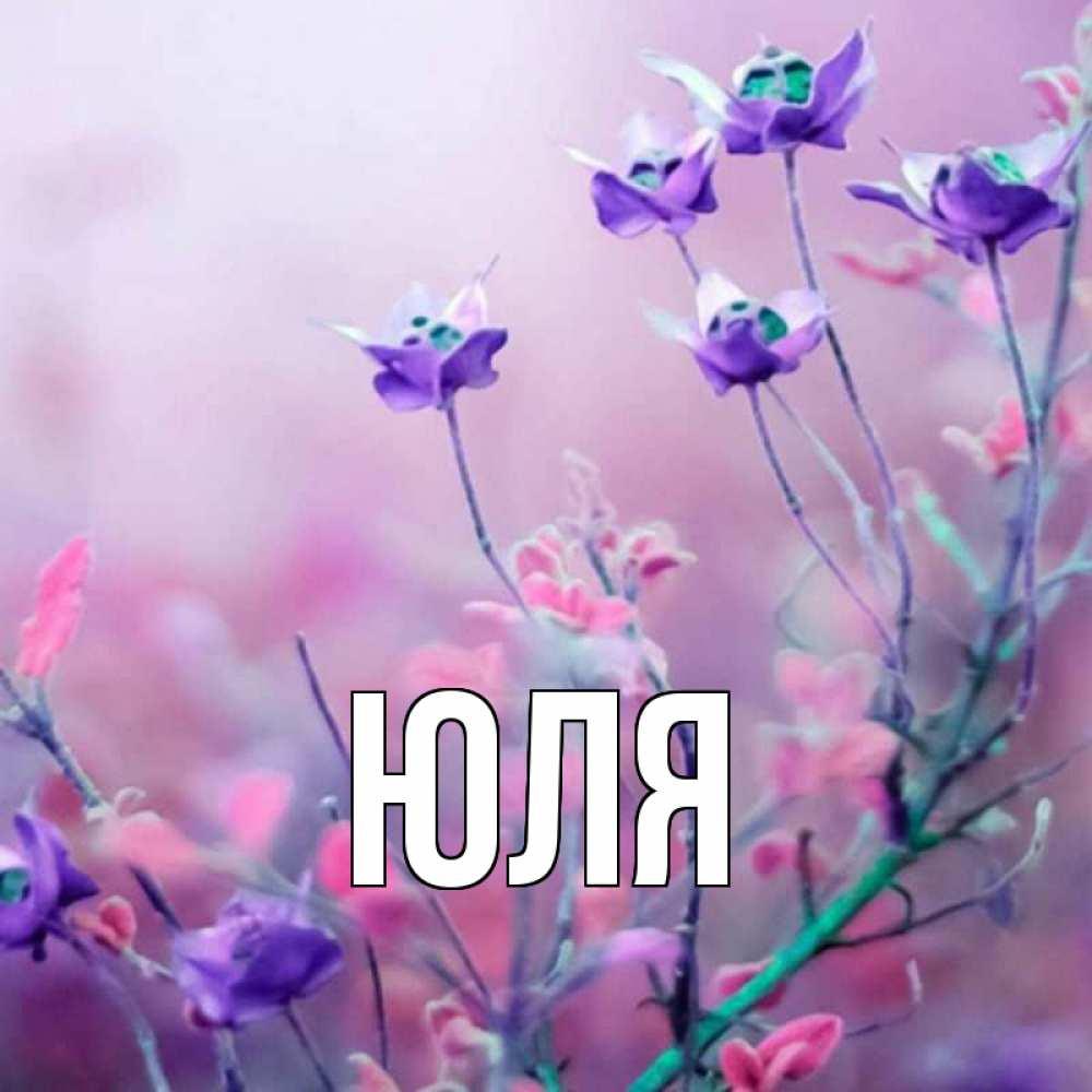 Красивую открытку для девушки с именем юля
