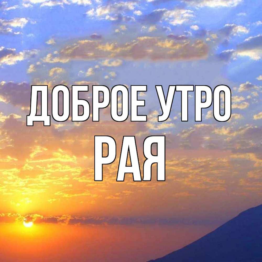 Данио зебра фото всего украинская