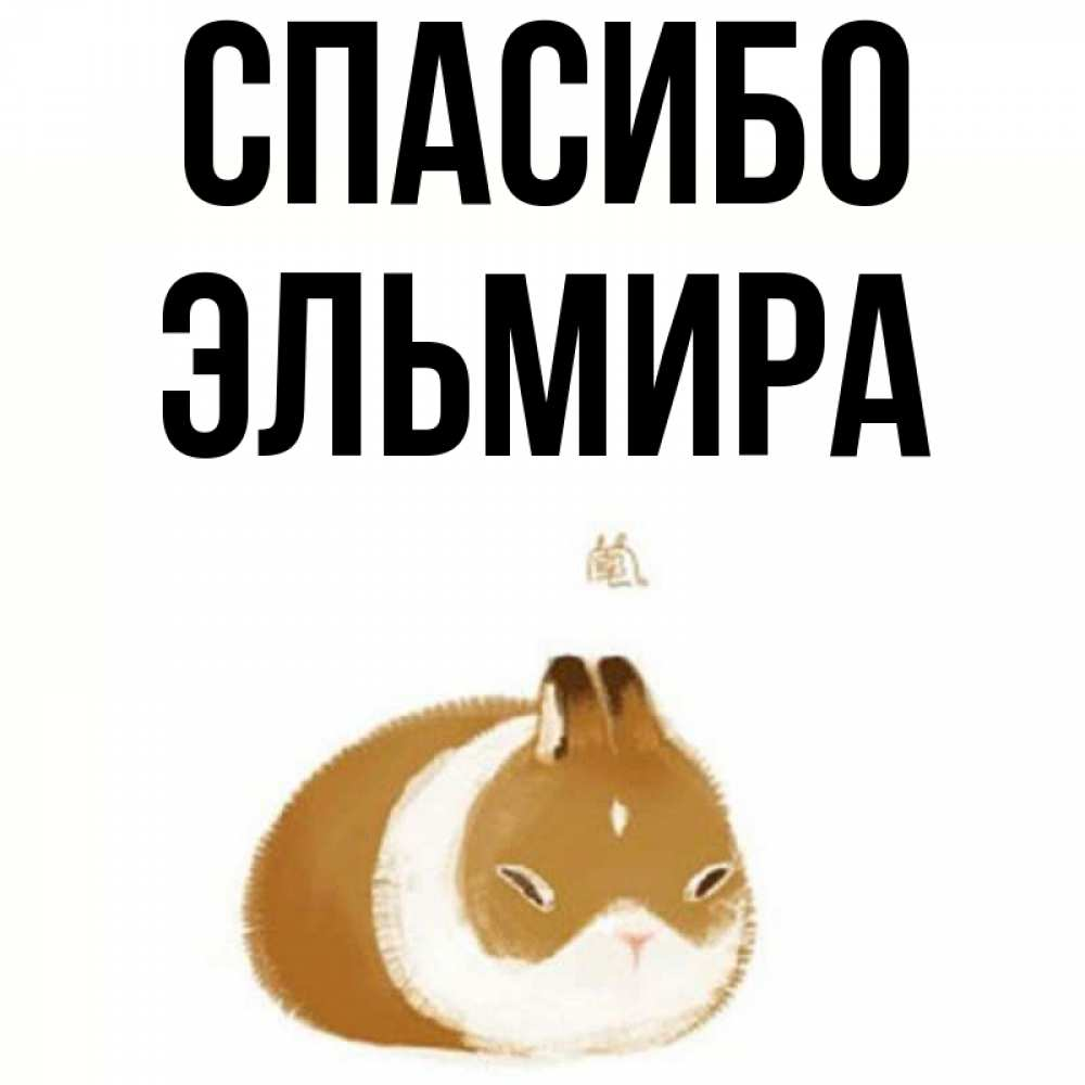 Открытка на каждый день с именем, Эльмира Спасибо коричнево белый домашний питомец Прикольная открытка с пожеланием онлайн скачать бесплатно