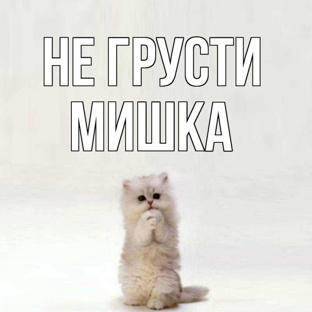 Картинки мишки с надписью не грусти, картинки поздравления открытки