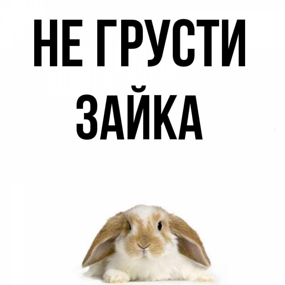 Картинки с надписью не грусти заяц, спокойной
