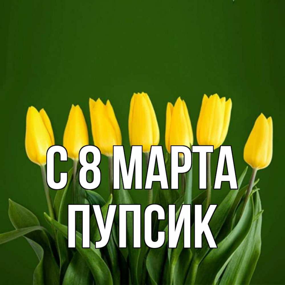 Поздравление на 8 марта пупсик