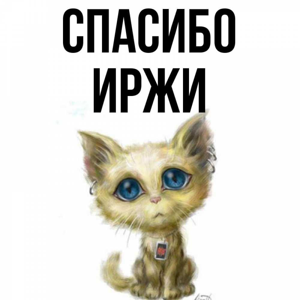 Открытка на каждый день с именем, Иржи Спасибо рисованный кот благодарит вас Прикольная открытка с пожеланием онлайн скачать бесплатно
