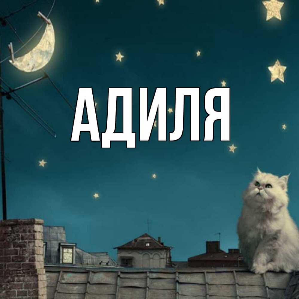 Красивые картинки с животными с надписями спокойной ночи