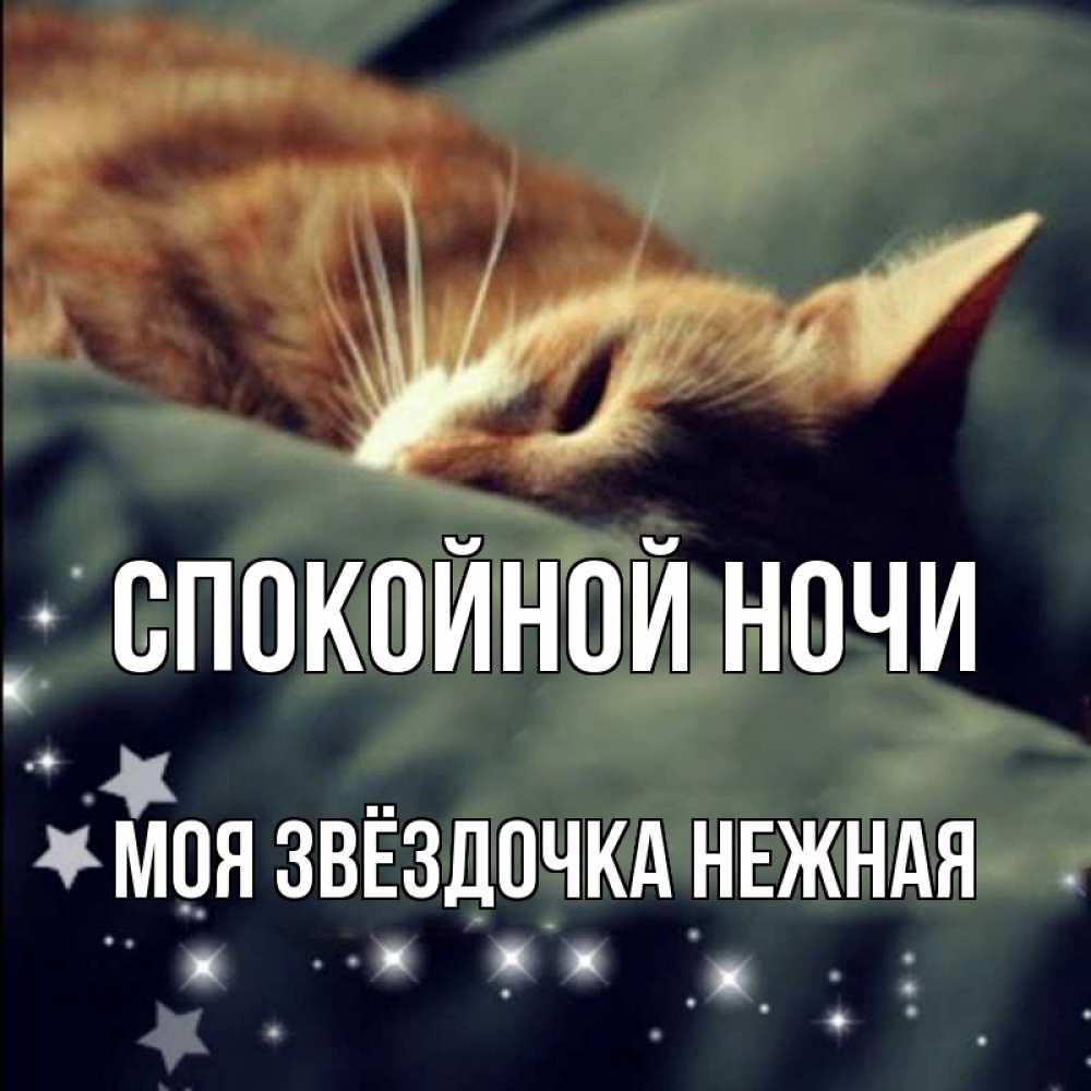 Спокойной ночи звездочка моя картинка