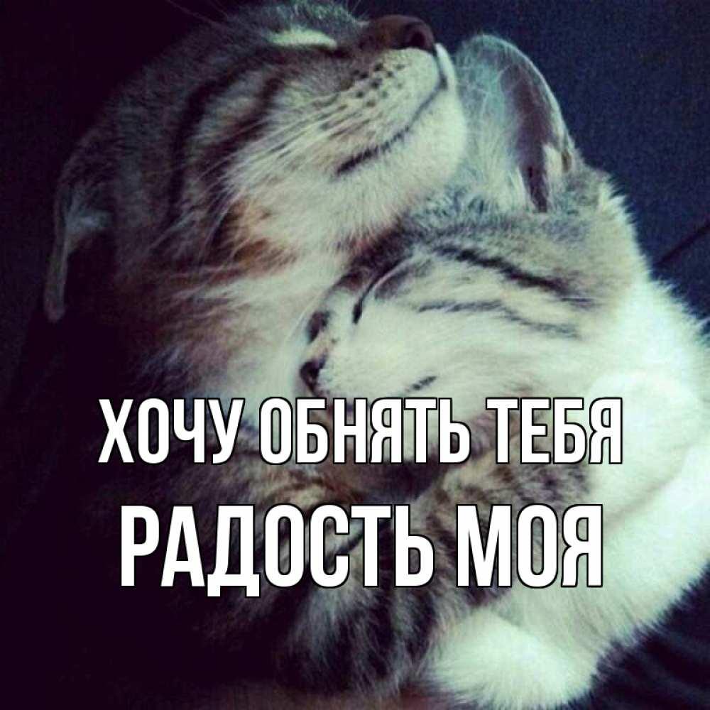Мезонин курск официальный сайт меню с картинками вами попробуем