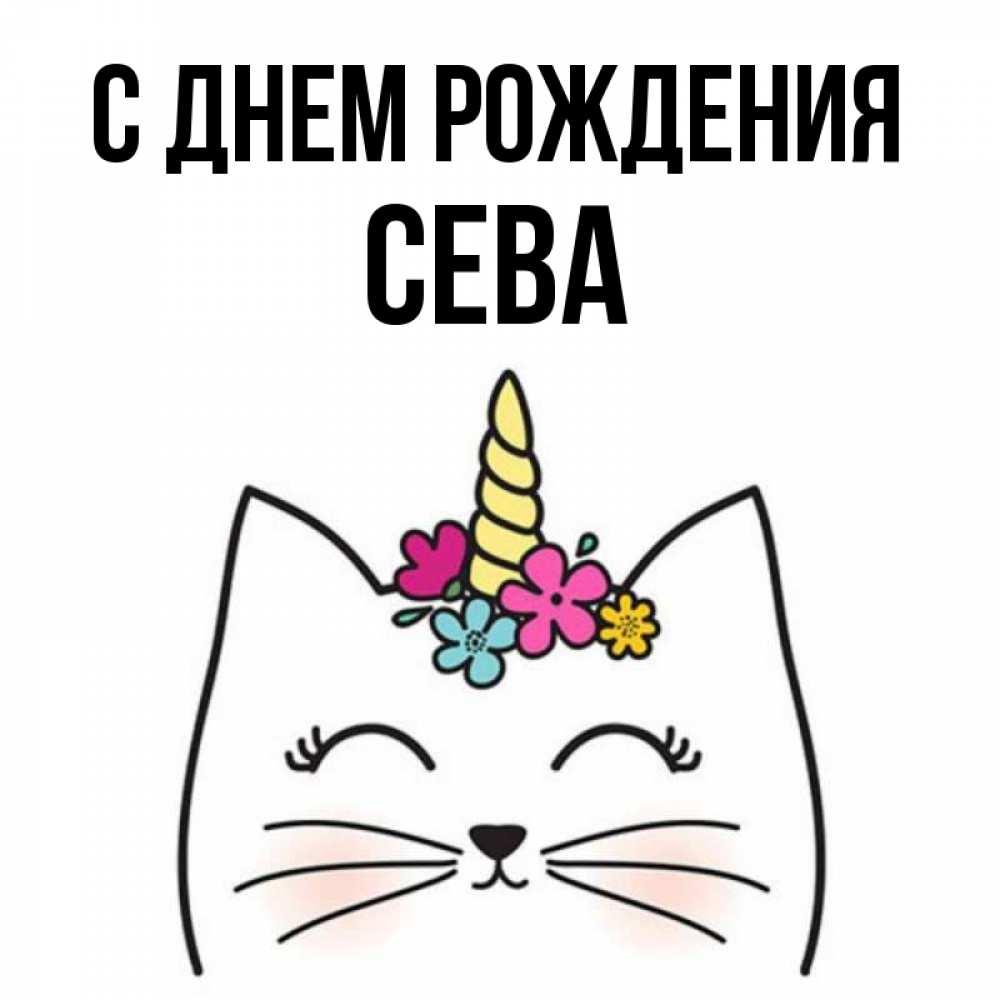 упрощенной сева с днем рождения открытки с днем рождения представительницы