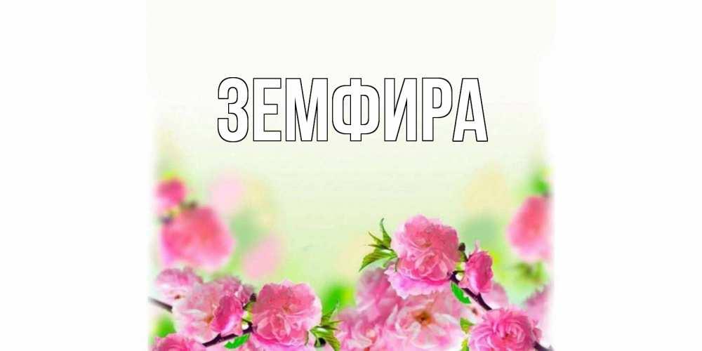 Нина, картинка с именем земфира