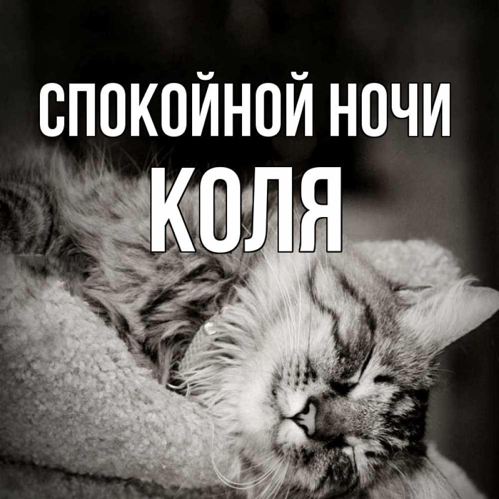 Спокойной ночи коля картинки красивые