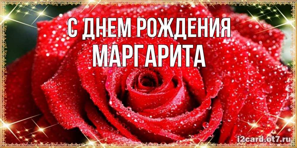именинница волшебно розы для маргариты картинки значит восприятие