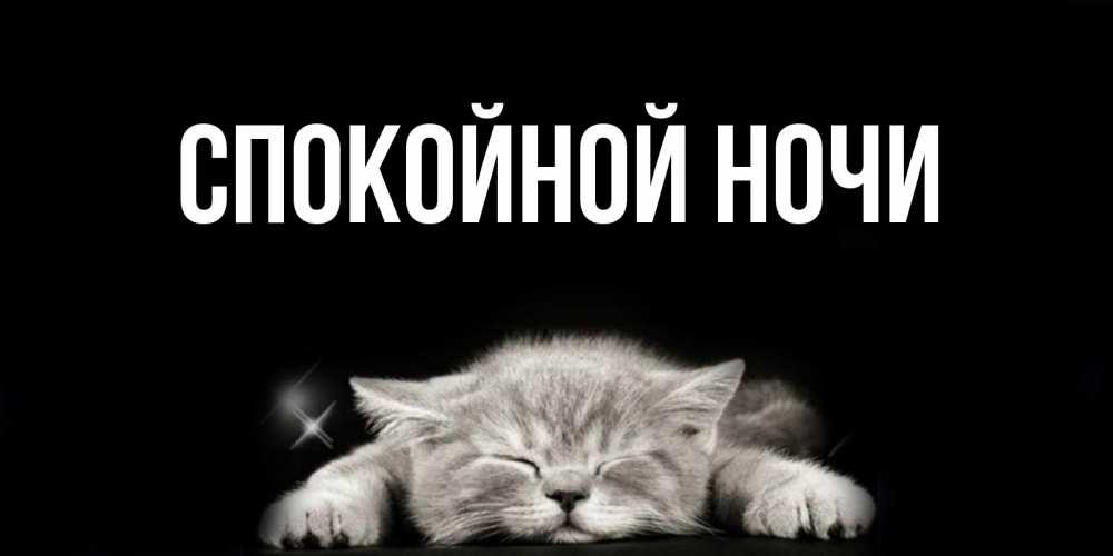 Открытка февраля, открытки с рыжим котом с надписью спокойной ночи