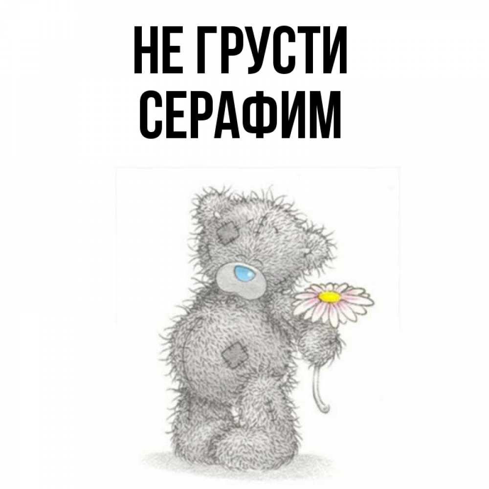 картинки медвежат не грусти часть берегов заросла