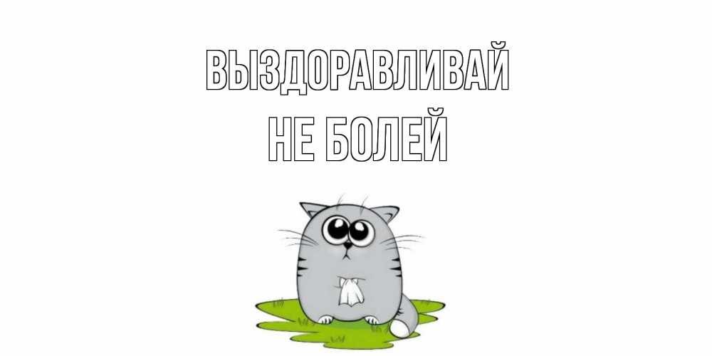 Выздоравливай картинки гиф котенок