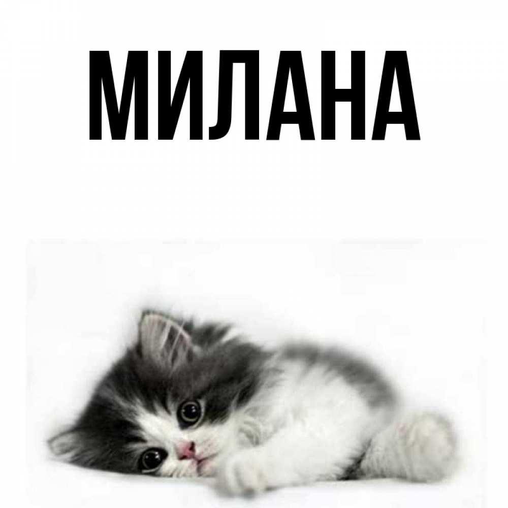 Смешные картинки с именем милана