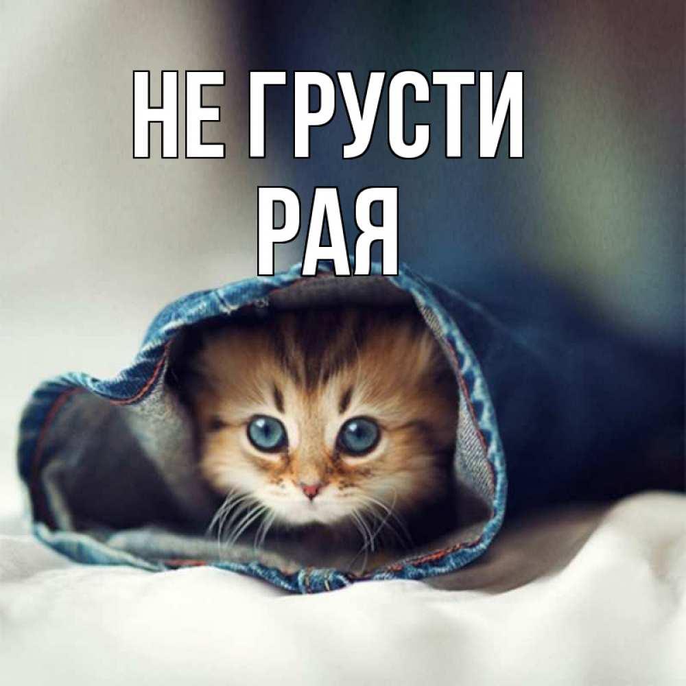 Не грусти и не переживай открытка