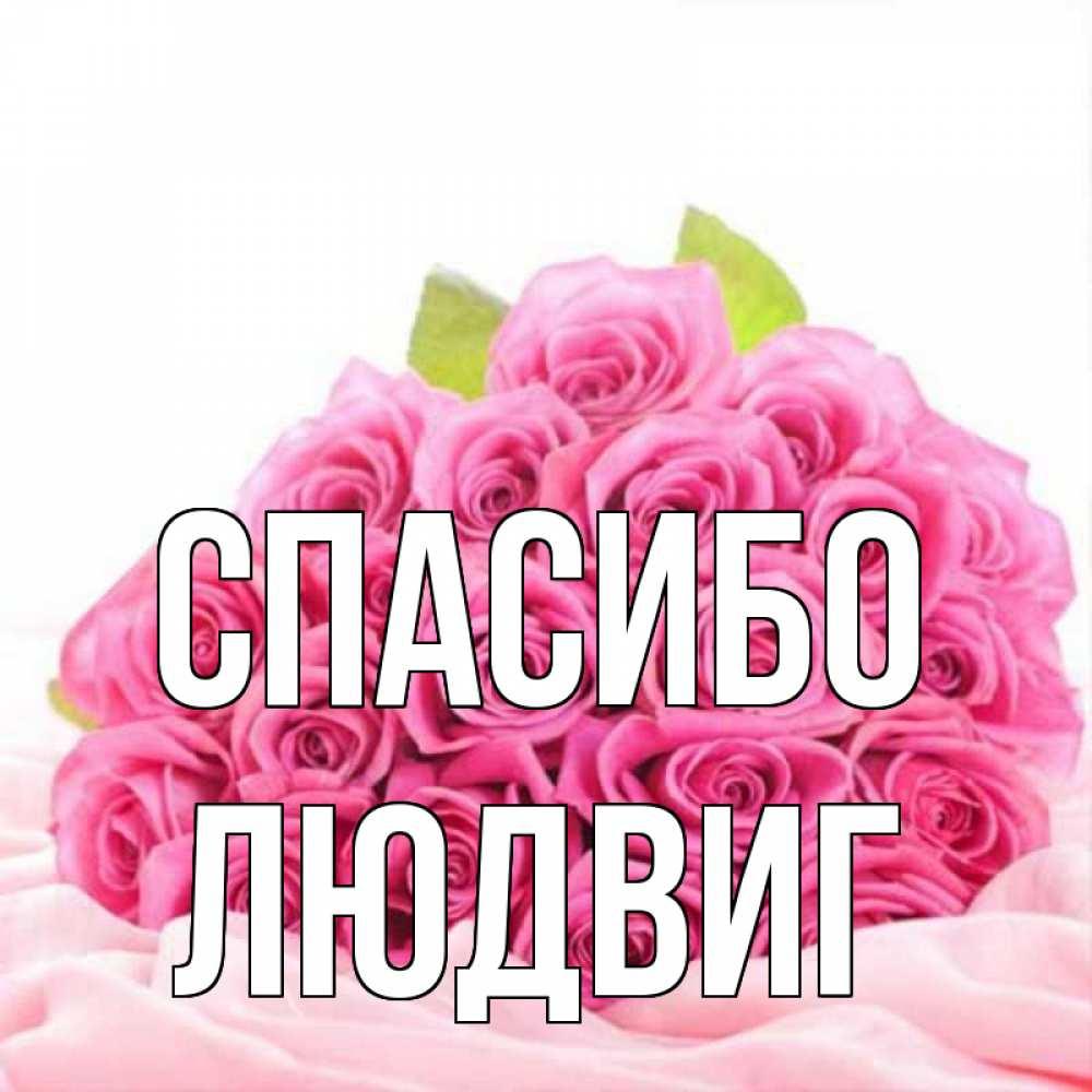 Открытка на каждый день с именем, Людвиг Спасибо розовые розы с подписью Прикольная открытка с пожеланием онлайн скачать бесплатно
