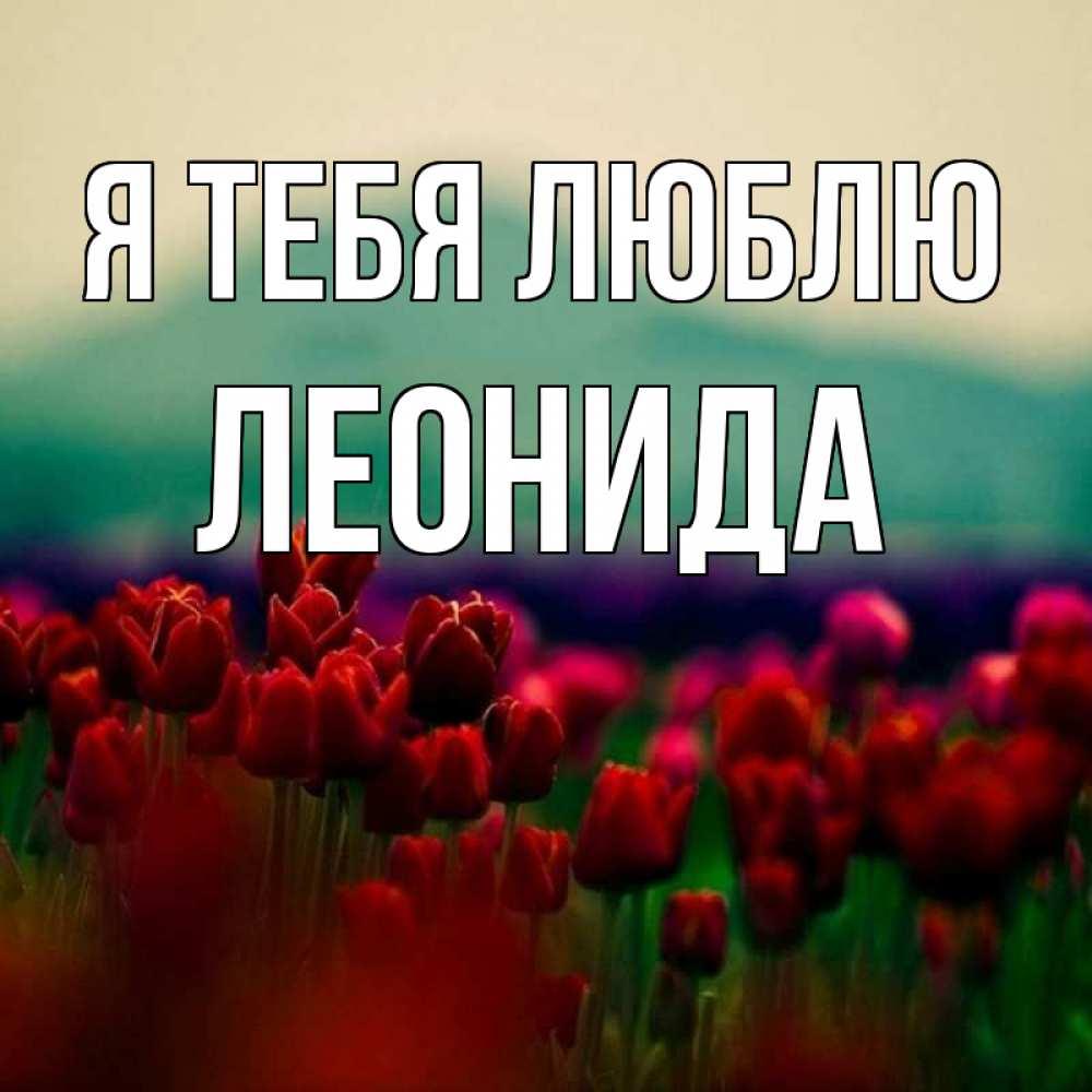 Открытка на каждый день с именем, Леонида Я тебя люблю тюльпаны 4 Прикольная открытка с пожеланием онлайн скачать бесплатно