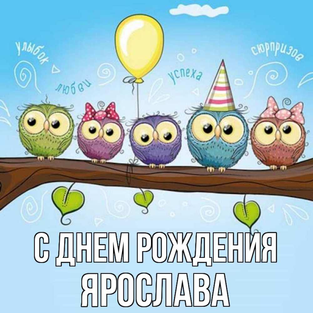 Приколы картинки, открытка ярославу 2 года