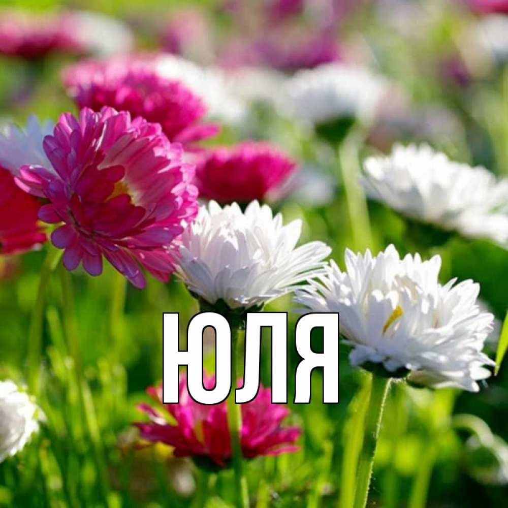 Надписью улыбнись, картинки цветы для юли