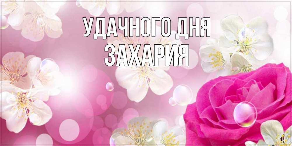 Открытка на каждый день с именем, Захария Удачного дня красивые цветы Прикольная открытка с пожеланием онлайн скачать бесплатно