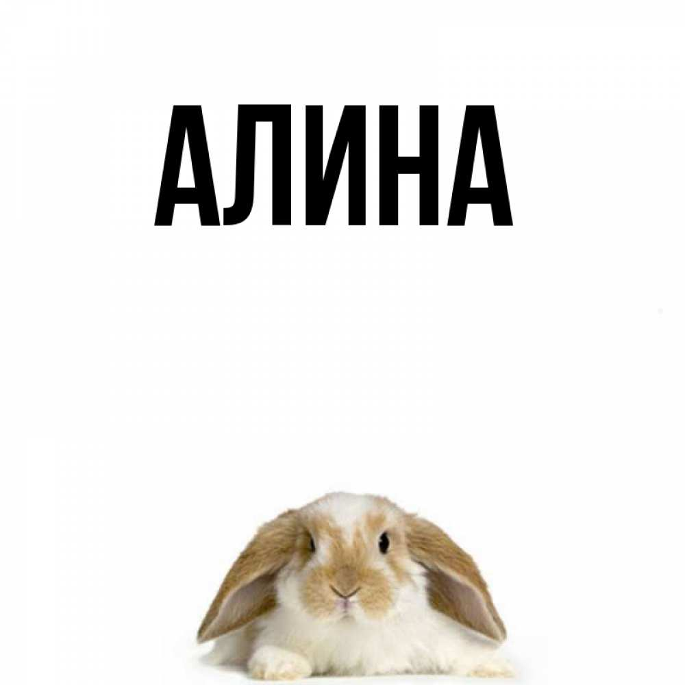 Приколы с именем алина в картинках, открытка