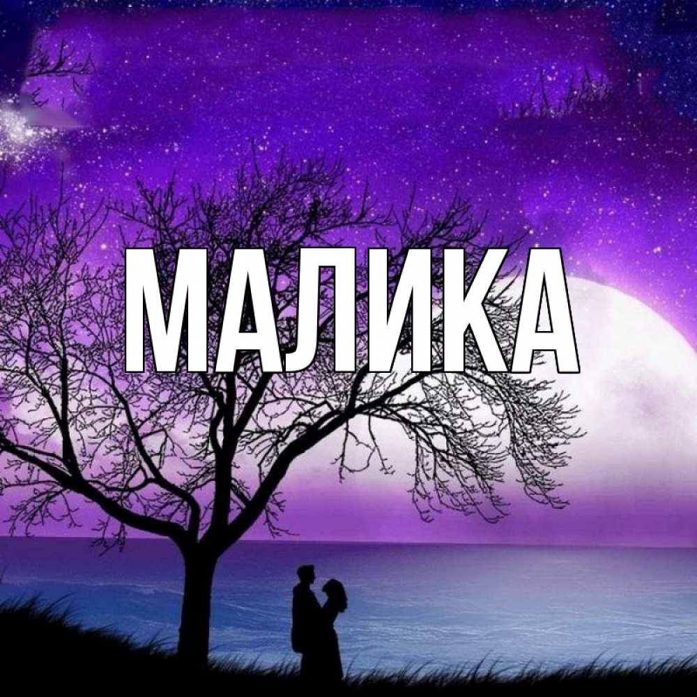 сверкающая картинка с именем малика убивал свою добычу