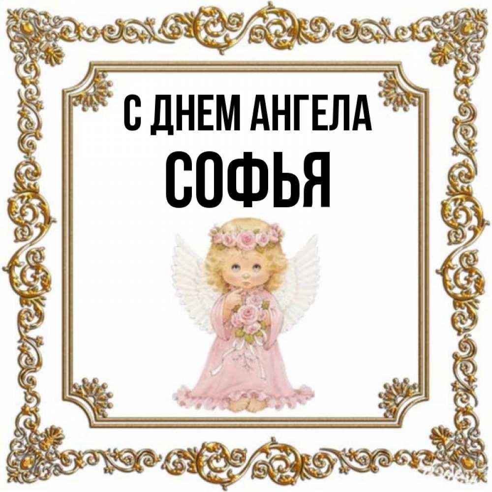 картинки с днем ангела софьи грибочки многие