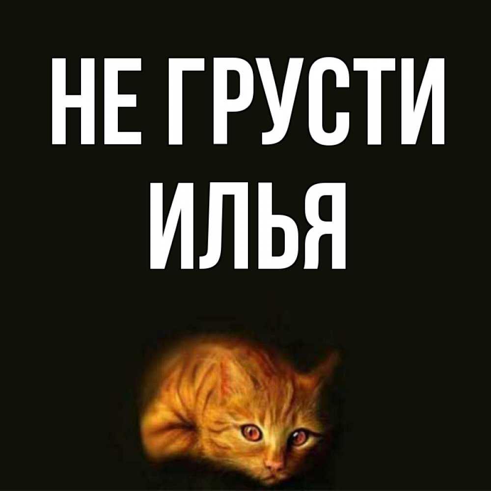 Картинки с именем илья приколы, картинки поздравления татарском