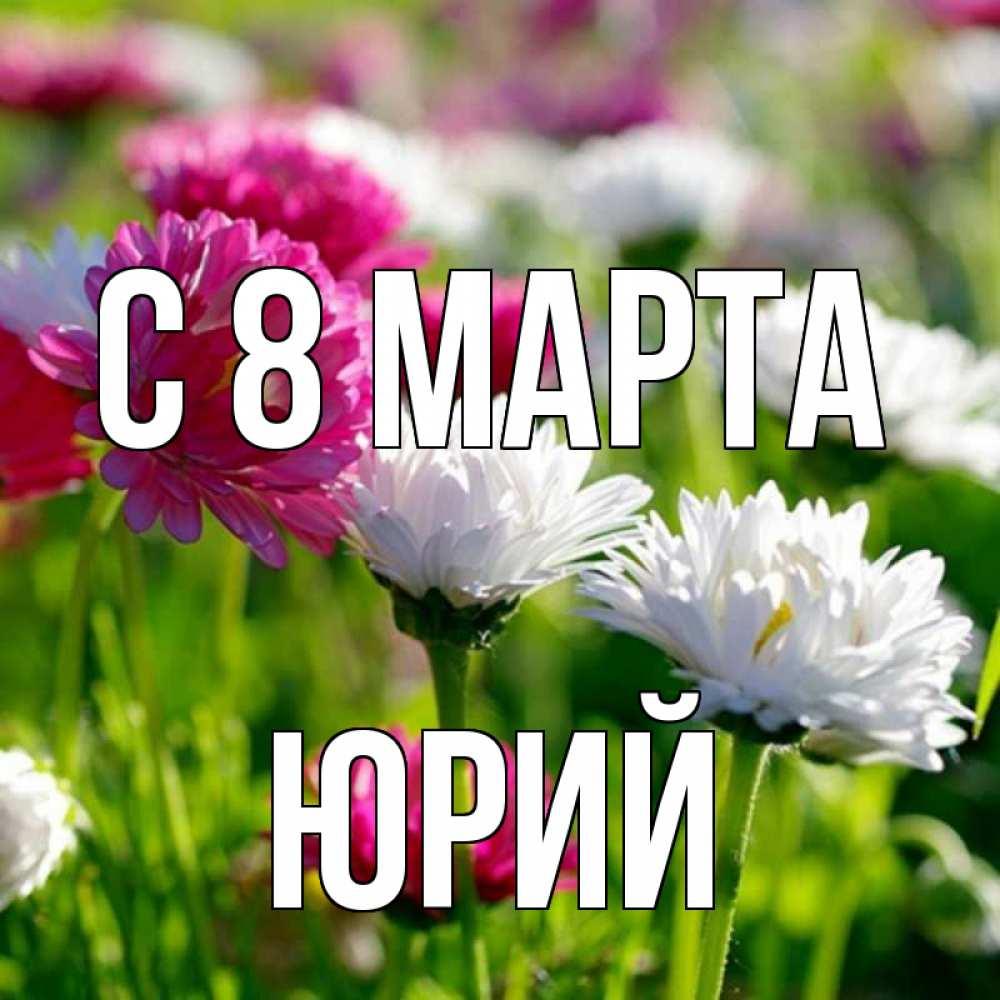 Фото весна в апреле когда все цветет