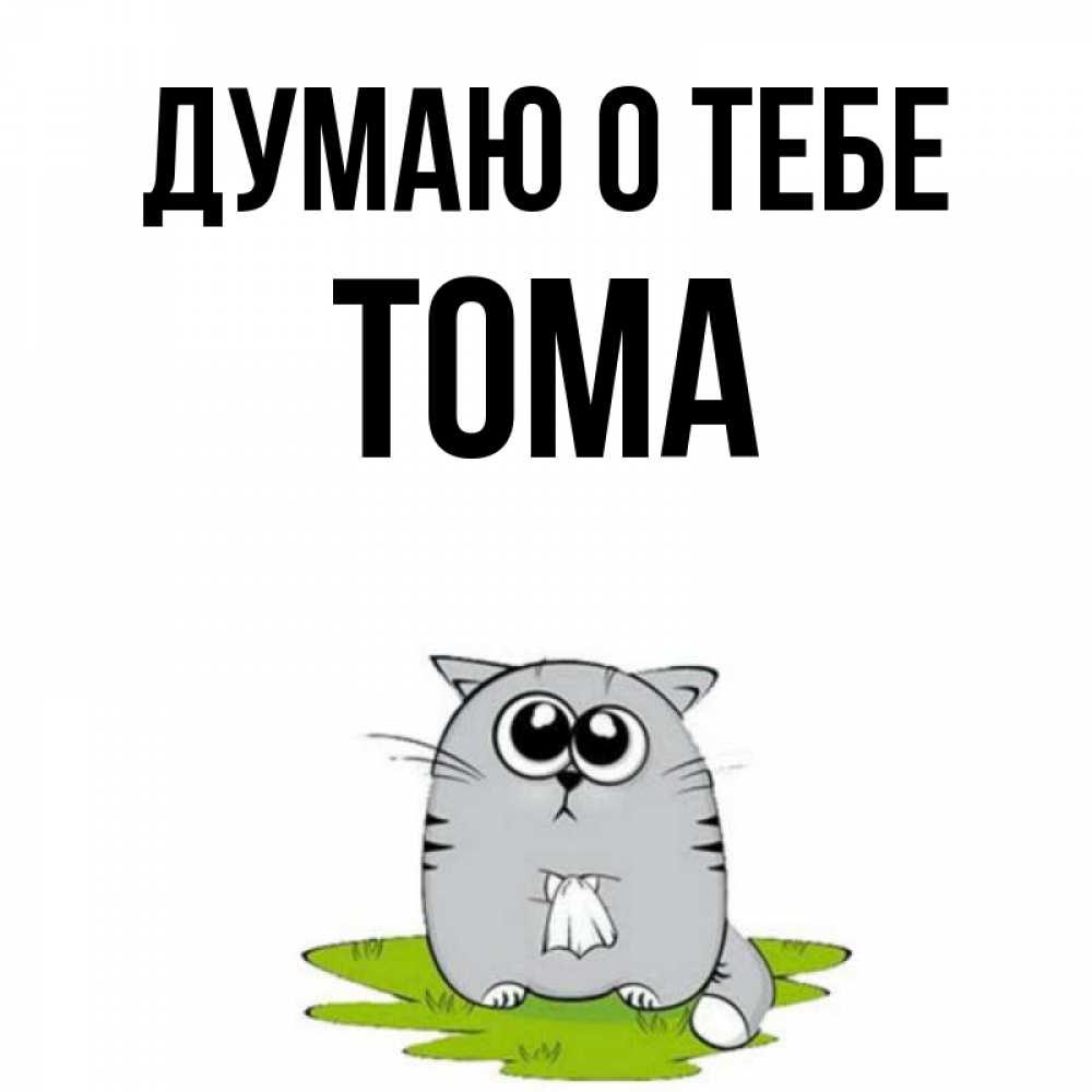 Гифка прозрачном, открытки с именем тома