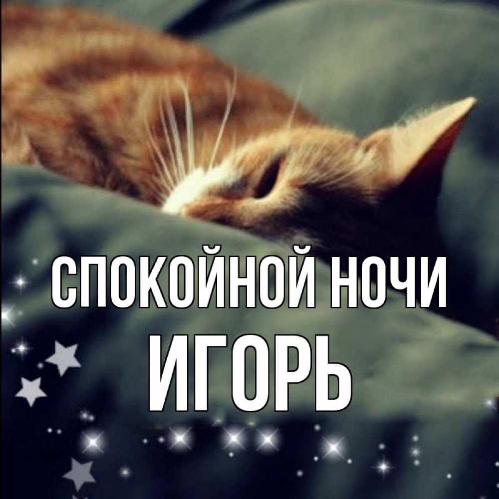 Картинки спокойной ночи игорек
